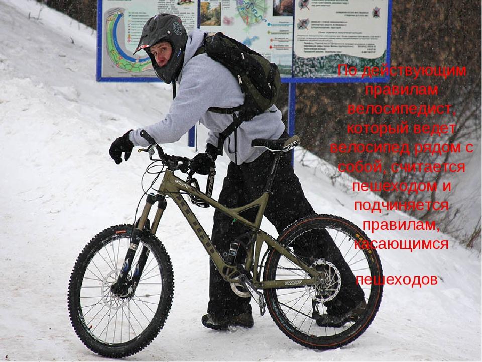 По действующим правилам велосипедист, который ведет велосипед рядом с собой,...