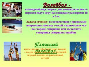 Волейбол - командный вид спорта: две команды по шесть игроков ведут игру на п