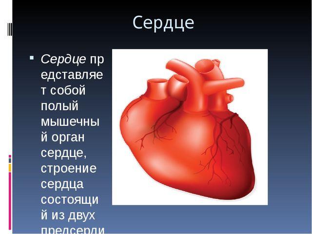 Сердце Сердцепредставляет собой полый мышечный орган сердце, строение сердца...