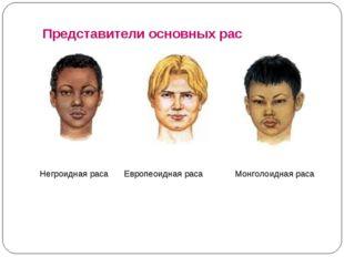 Представители основных рас Негроидная раса Европеоидная раса Монголоидная раса