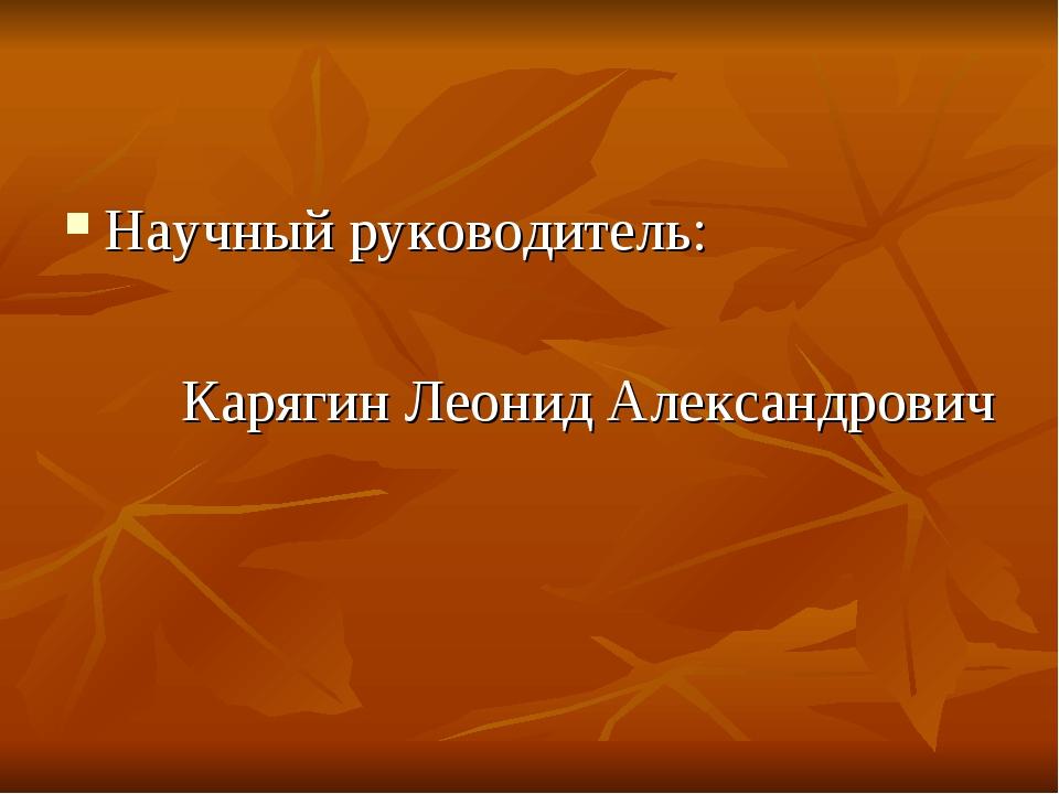 Научный руководитель: Карягин Леонид Александрович