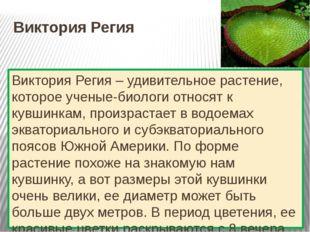 Виктория Регия Виктория Регия – удивительное растение, которое ученые-биологи
