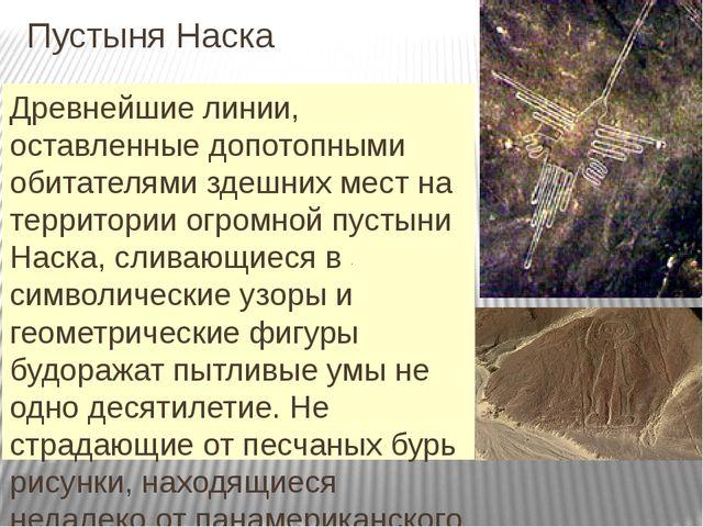 Пустыня Наска Древнейшие линии, оставленные допотопными обитателями здешних м...