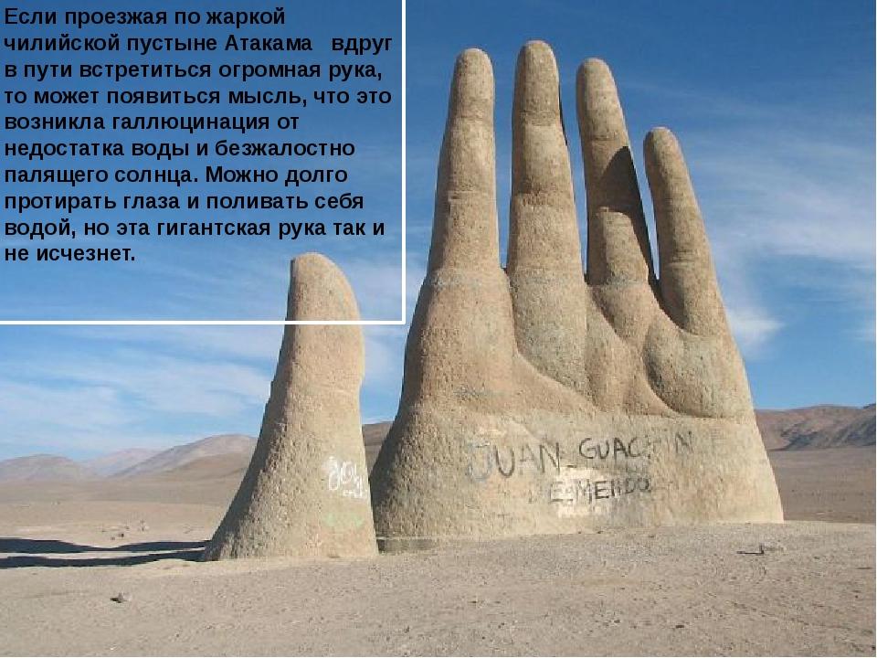 Если проезжая по жаркой чилийской пустыне Атакама  вдруг в пути встретиться...