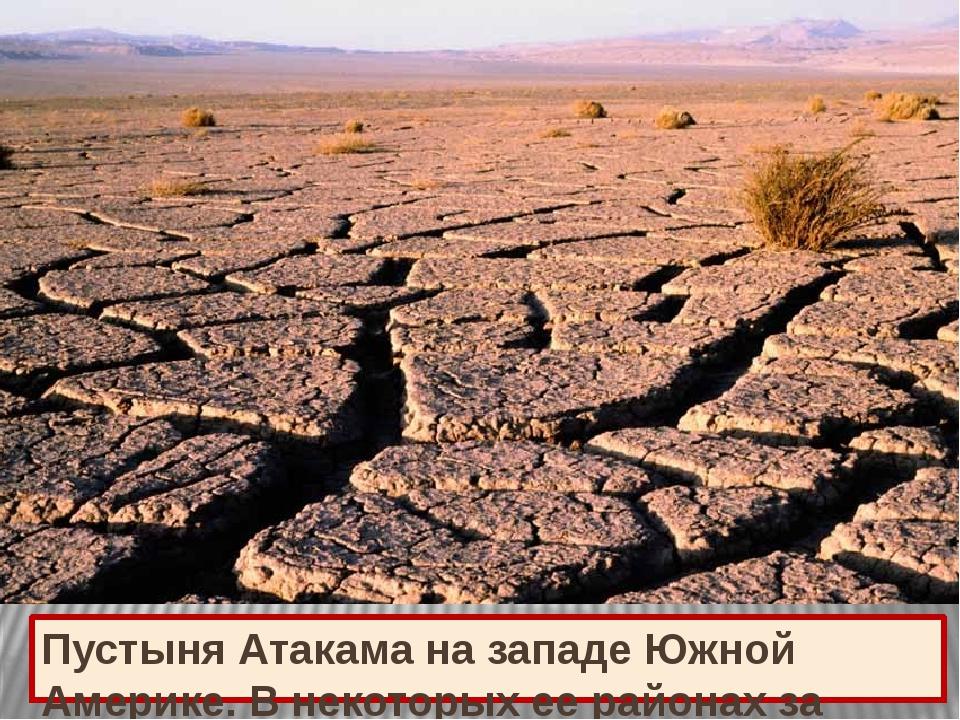 Пустыня Атакама на западе Южной Америке. В некоторых ее районах за последние...