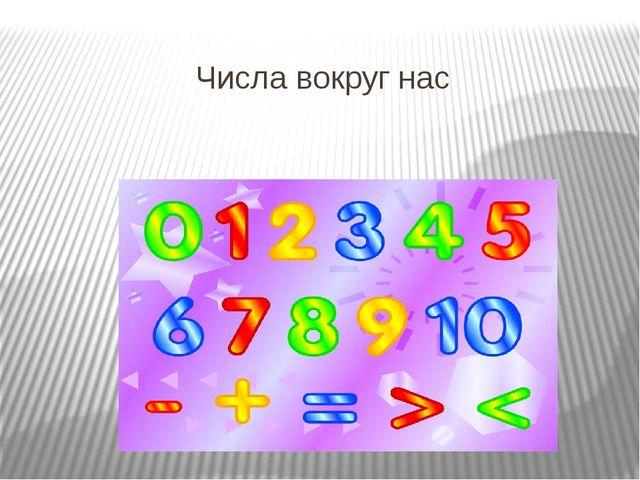 Числа вокруг нас