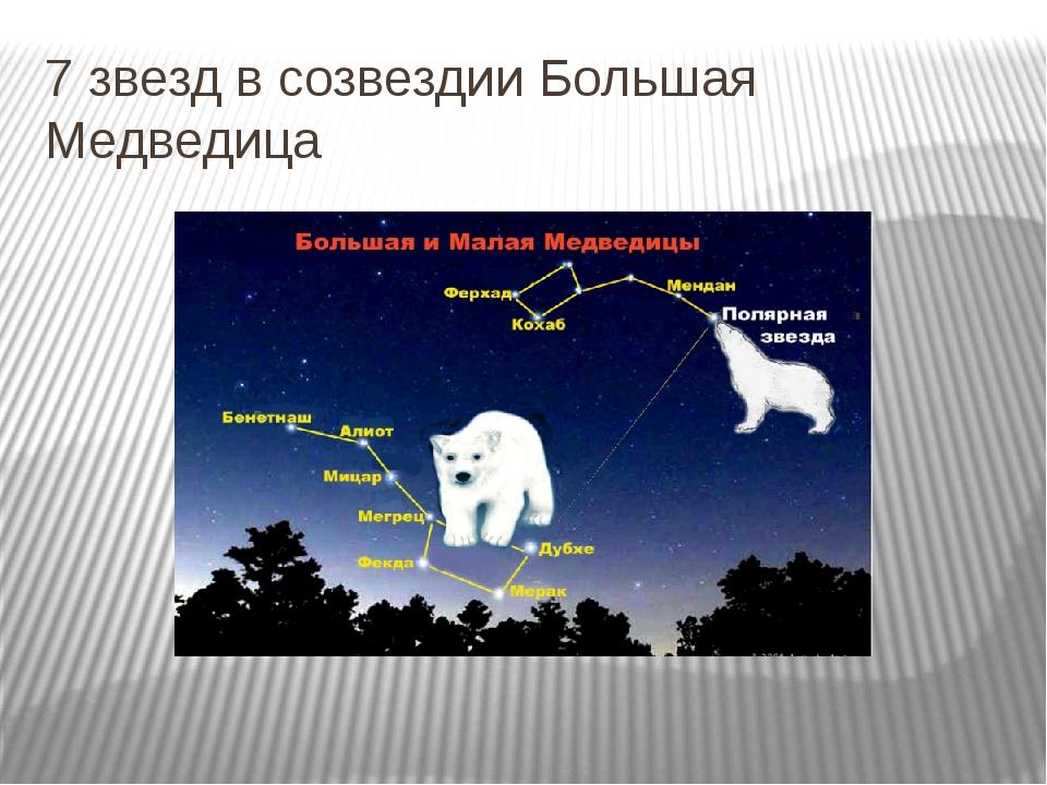 7 звезд в созвездии Большая Медведица