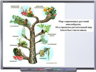 Мир современных растений многообразен. Но в прошлом растительный мир Земли бы