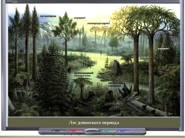 Лес девонского периода