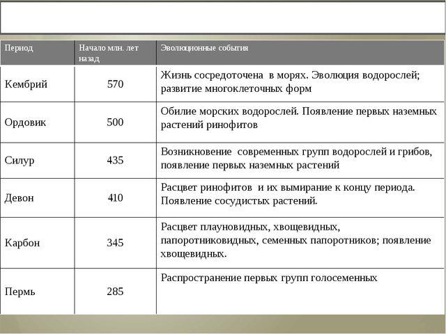 Выполнение задания в рабочей тетради «Развитие жизни в Палеозойскую эру» Пери...