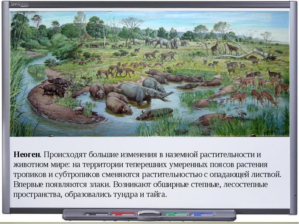 Неоген. Происходят большие изменения в наземной растительности и животном мир...