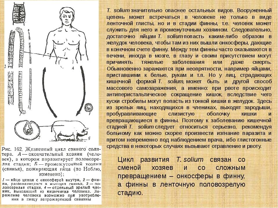 Цикл развития Т.solium связан со сменой хозяев и со сложным превращением –...
