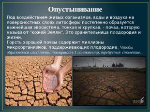 Опустынивание Под воздействием живых организмов, воды и воздуха на поверхност