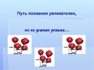 Путь познания увлекателен, но не усыпан розами…