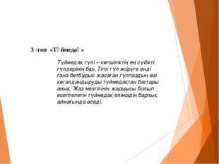 3 -топ «Түймедақ» Түймедақ гүлі – көпшіліктің ең сүйікті гүлдерінің бірі. Ті
