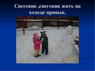 Снеговик ,снеговик жить на холоде привык.