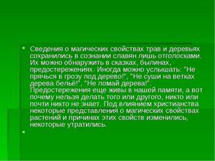 Сведения о магических свойствах трав и деревьях сохранились в сознании славян