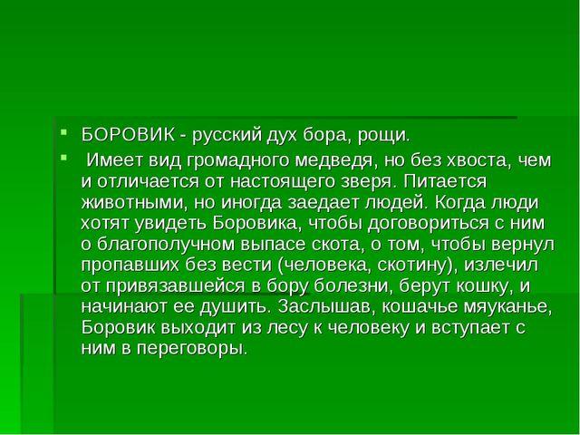 БОРОВИК - русский дух бора, рощи. Имеет вид громадного медведя, но без хвоста...