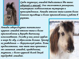 Ископаемые останки этой лошади, современницы мамонта, найдены Черским в 1878
