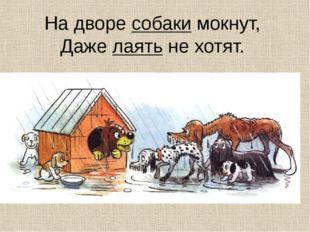 На дворе собаки мокнут, Даже лаять не хотят.