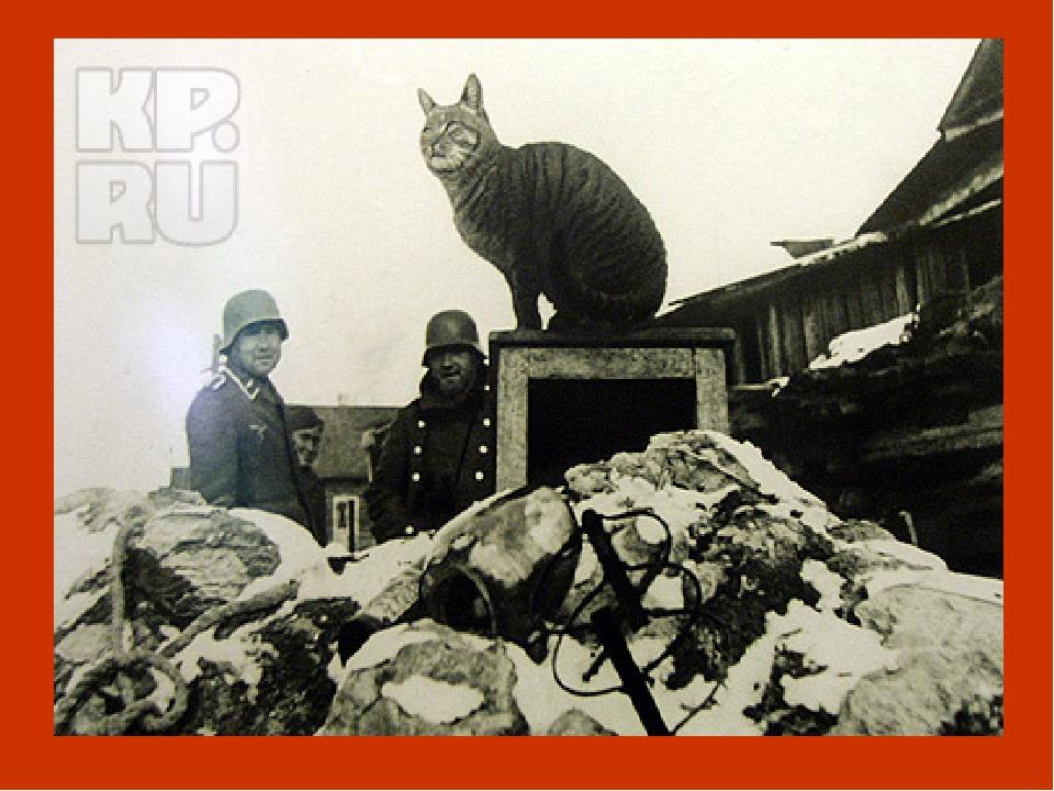 И тогда было принято решение доставить в Ленинград кошек. В апреле 1943 года...