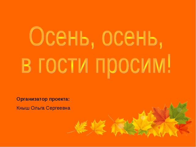 Организатор проекта: Кныш Ольга Сергеевна