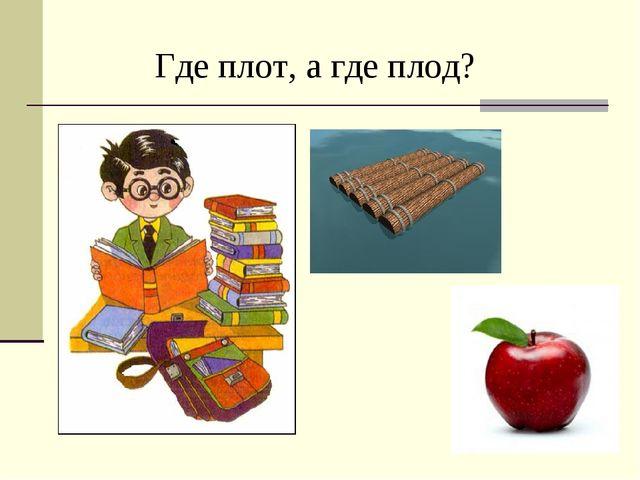 Где плот, а где плод?