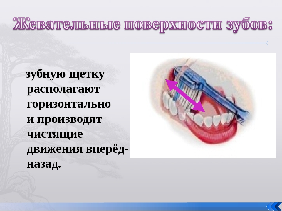 зубную щетку располагают горизонтально и производят чистящие движения вперёд...