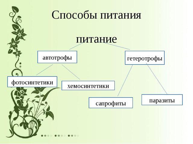 Способы питания питание автотрофы гетеротрофы фотосинтетики хемосинтетики сап...