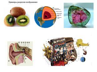 Примеры разрезов изображения