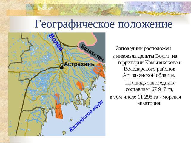 Географическое положение Заповедник расположен в низовьях дельты Волги, на те...