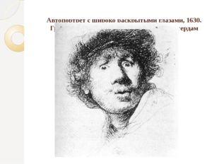 Автопортрет с широко раскрытыми глазами, 1630. Гравюра на меди, 51х46. Риксм