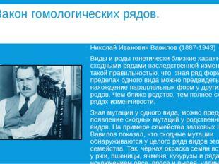Закон гомологических рядов. Николай Иванович Вавилов (1887-1943) Виды и роды