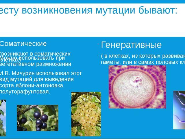 По месту возникновения мутации бывают: Соматические (возникают в соматических...