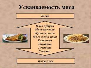 Усваиваемость мяса Мясо нутрии Мясо кролика Куриное мясо Мясо гуся и утки Тел