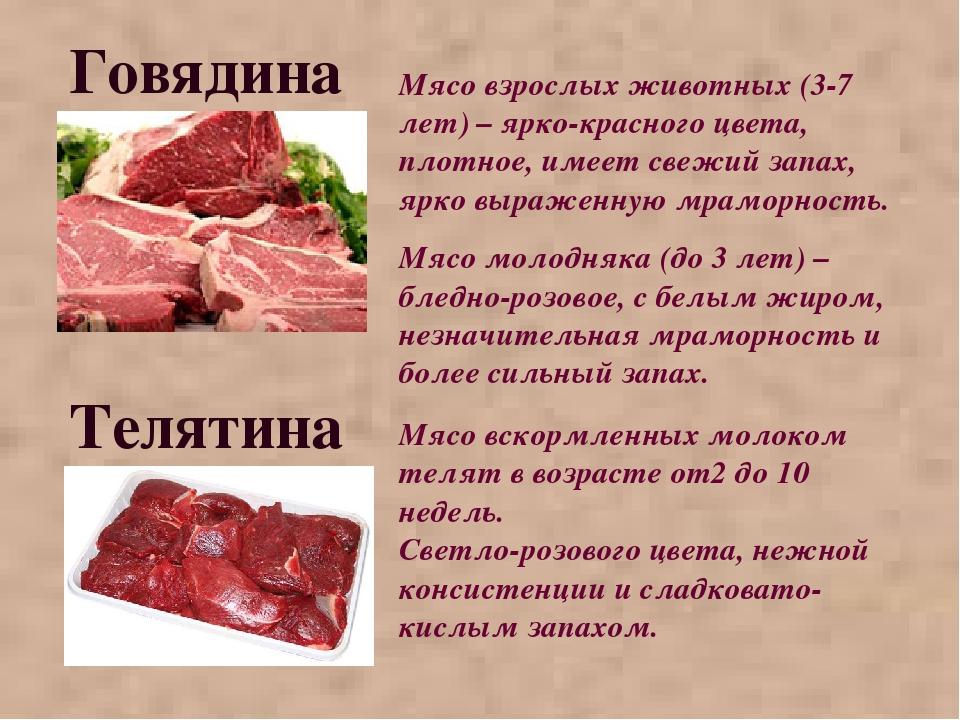 Говядина Мясо взрослых животных (3-7 лет) – ярко-красного цвета, плотное, име...