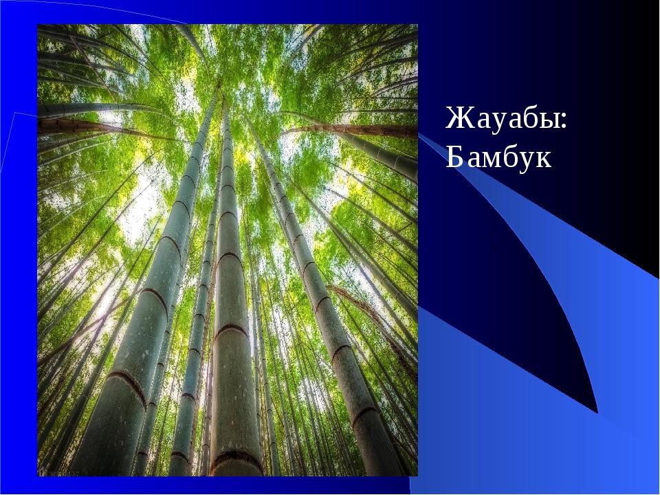 Жауабы: Бамбук
