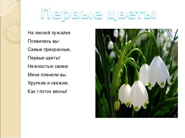 На лесной лужайке Появились вы- Самые прекрасные, Первые цветы! Нежностью сво...