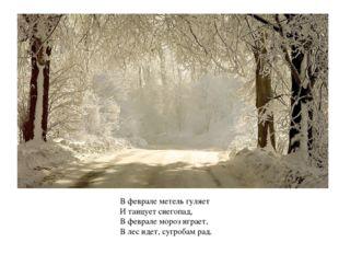 В феврале метель гуляет И танцует снегопад, В феврале мороз играет, В лес иде