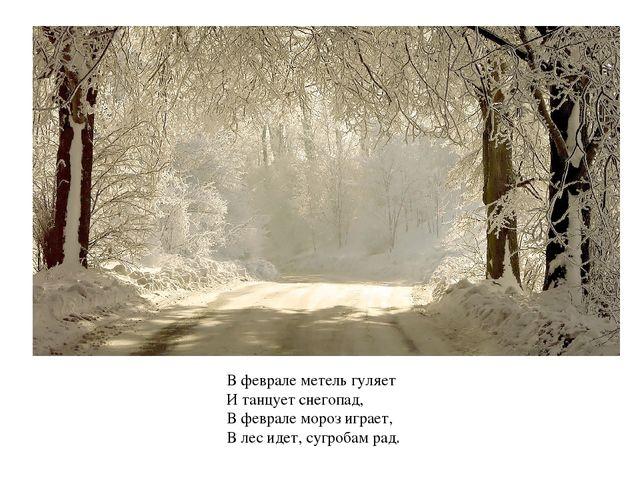 В феврале метель гуляет И танцует снегопад, В феврале мороз играет, В лес иде...