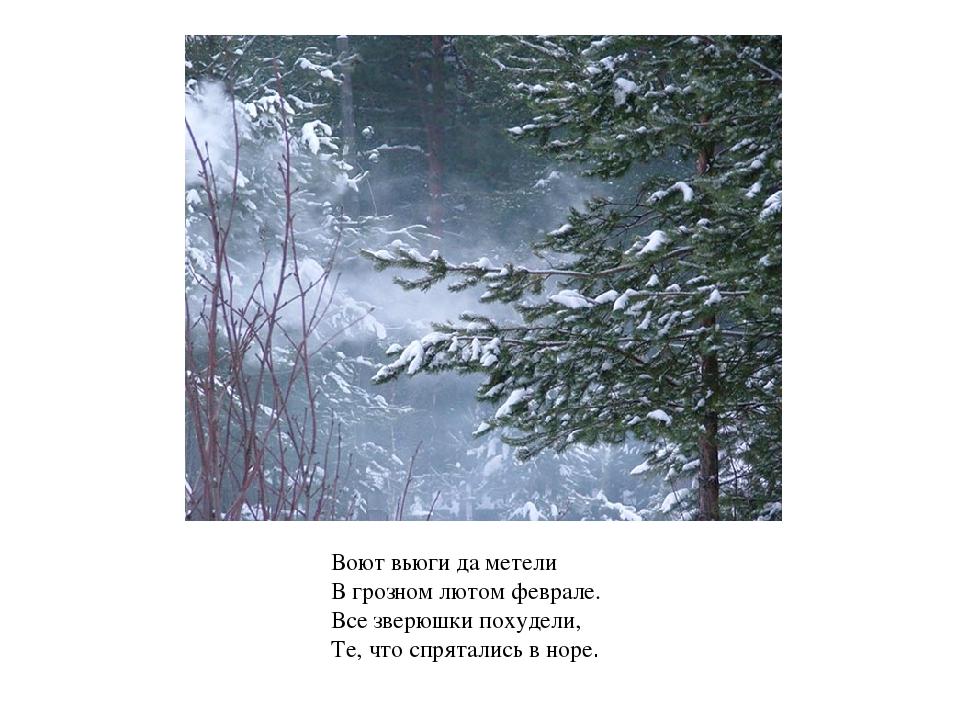 Воют вьюги да метели В грозном лютом феврале. Все зверюшки похудели, Те, что...