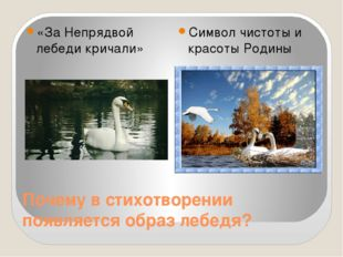 Почему в стихотворении появляется образ лебедя? «За Непрядвой лебеди кричали»