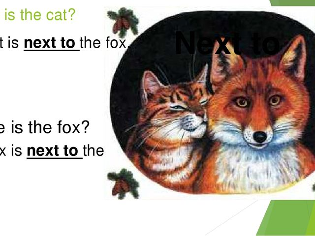 Where is the cat? Next to The cat is next to the fox. Where is the fox? The f...
