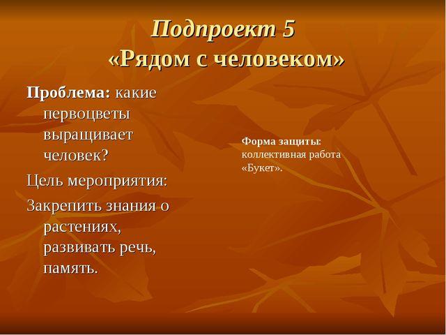 Подпроект 5 «Рядом с человеком» Проблема:какие первоцветы выращивает челове...