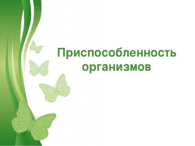 Free Powerpoint Templates Приспособленность организмов Free Powerpoint Templa...