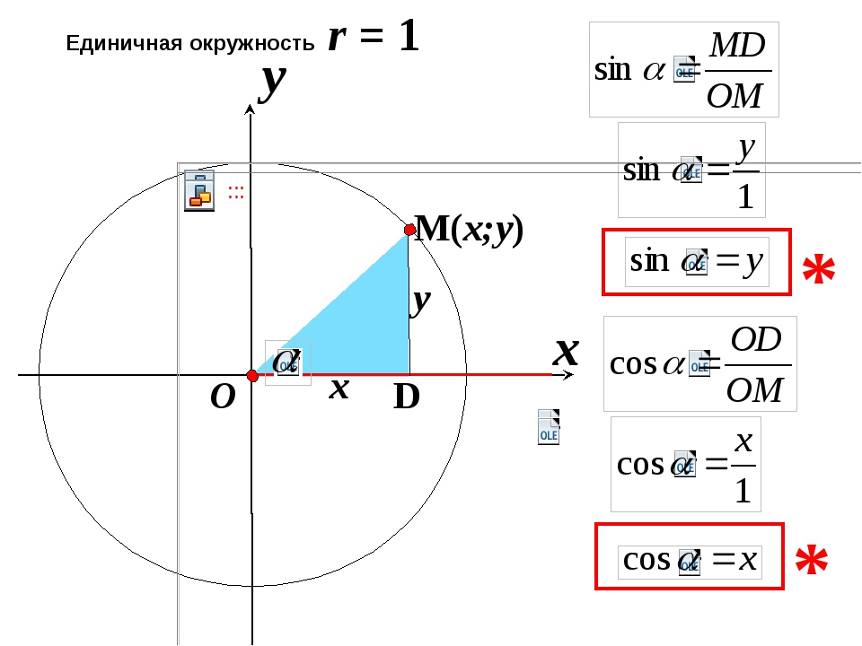 x Единичная окружность r = 1 y O x y D * * M(x;y)