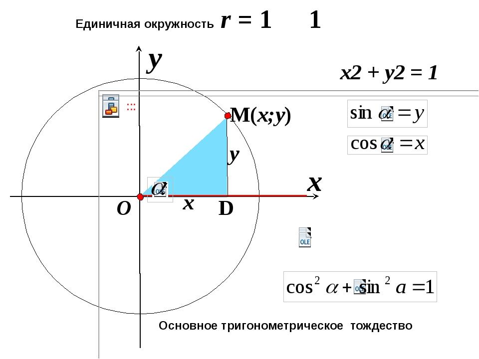 x Единичная окружность r = 1 y O x y x2 + y2 = 1 1 Основное тригонометрическ...