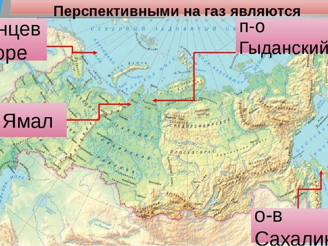 Перспективными на газ являются п-о Ямал о-в Сахалин Баренцево море п-о Гыданс...