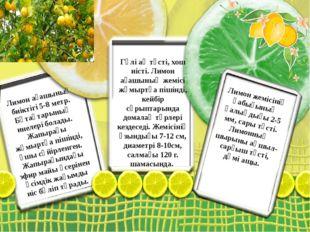 Лимон ағашының биіктігі 5-8 метр. Бұтақтарының инелері болады. Жапырағы жұмыр