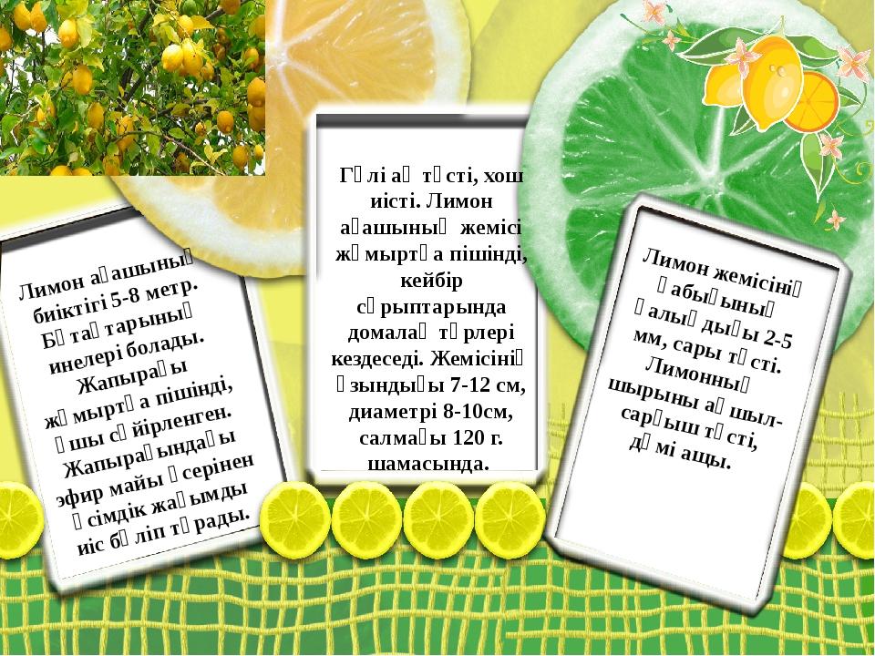 Лимон ағашының биіктігі 5-8 метр. Бұтақтарының инелері болады. Жапырағы жұмыр...